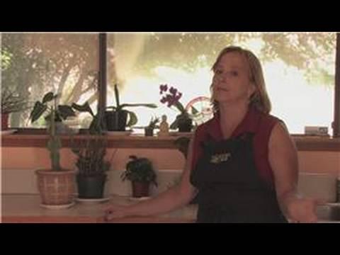 Gardening Tips : How to Make Indoor Window Gardens