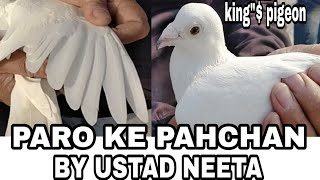 PARO KE PAHCHAN BY USTAD NEETA JI..