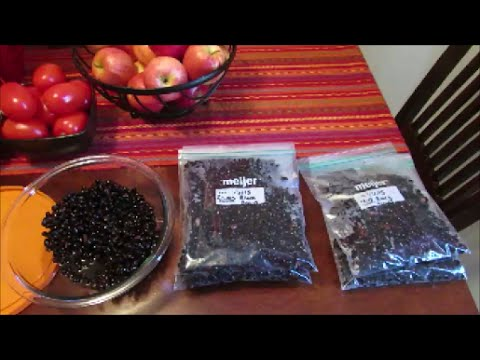 Food Prep | Healthy Snacks | How to Cook Dry Beans