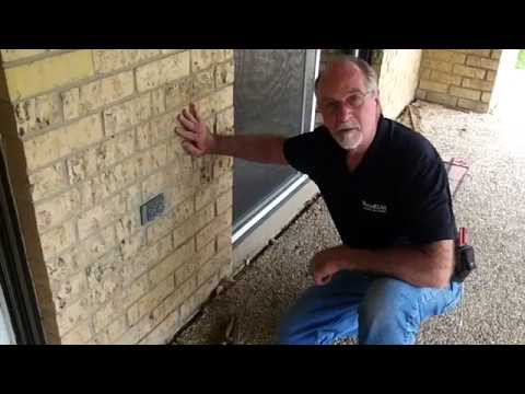 Fort Worth Home Inspector Finds Termites | 817-797-2461