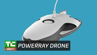 The Powerray Drone
