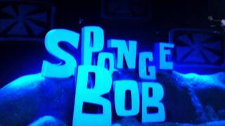 spongebob truth or square song