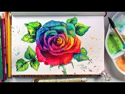 Rainbow Rose // Sketchbook Sunday Watercolor/Colored Pencil Time Lapse