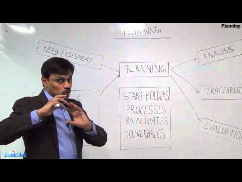 PMI-PBA - Planning  Domain- High Level View