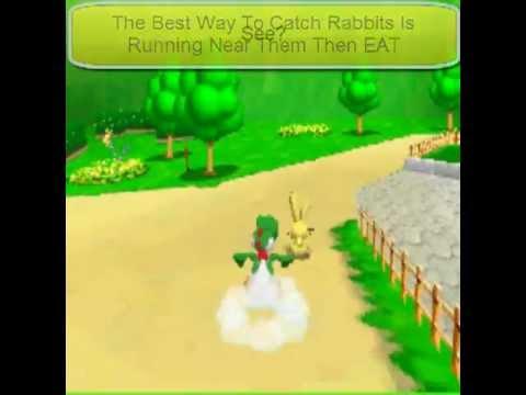 Super Mario 64 DS Where Are All The Rabbits