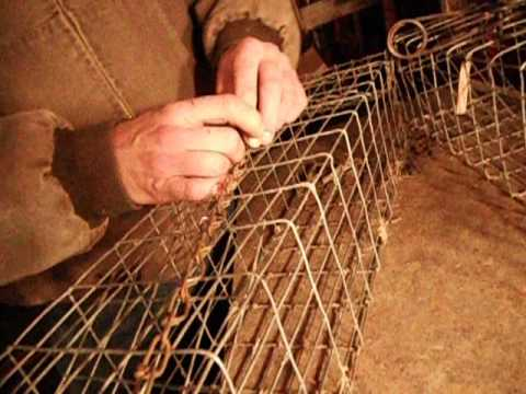 Mink boxes made from colony traps