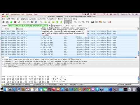 How to get Skype IP using WireShark