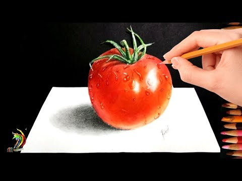 Very Easy..!! How To Draw Realistic Tomato | 3D Drawing of Tomato