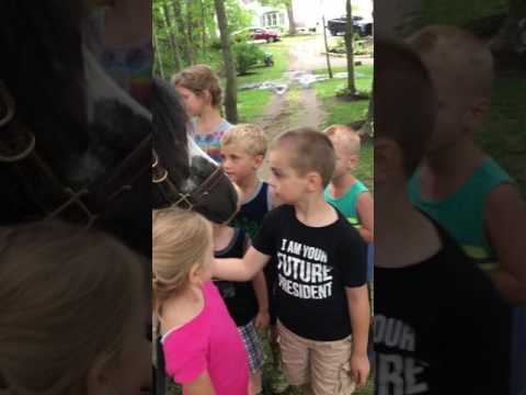 MY CUTE PONY BEING LOVED BY LITTLE KIDS