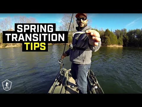 Spring Transition Fishing Tips For Prespawn Bass