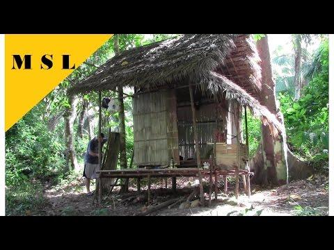 Dschungel Bushcraft, Hütte Bauen - Jungle Bushcraft, Building a Hut 3