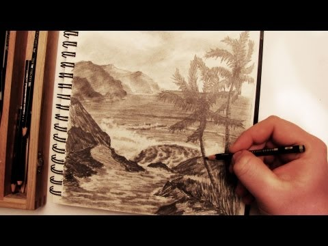How to Draw a Realistic Palm Tree Beach Landscape in Pencil