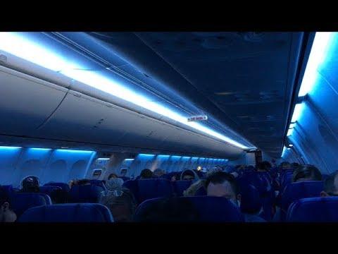 Southwest Airlines NEW 737-800 | Phoenix- Dallas (Love Field)