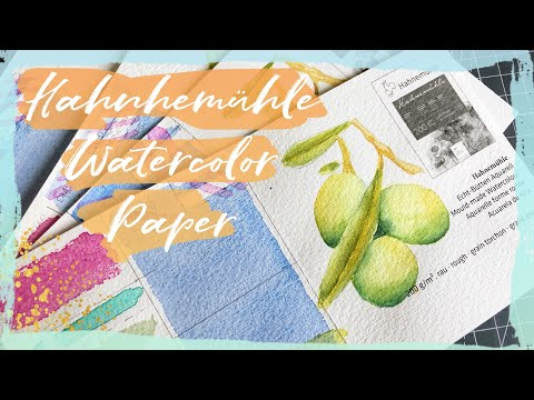 Hahnemühle Watercolor Paper | Art Supply Review