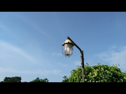 Lenovo Zuk Z1 Camera Review with Sample Pics & Video in Full HD