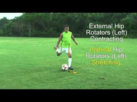 Internal and External Hip Rotation Muscles Needed For Stronger Soccer Kicks