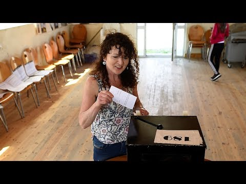 Irish citizens living abroad fly home to vote in abortion referendum