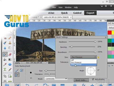 How to Use the Paint Tools in Adobe Photoshop Elements 15 14 13 12 11 Tutorial