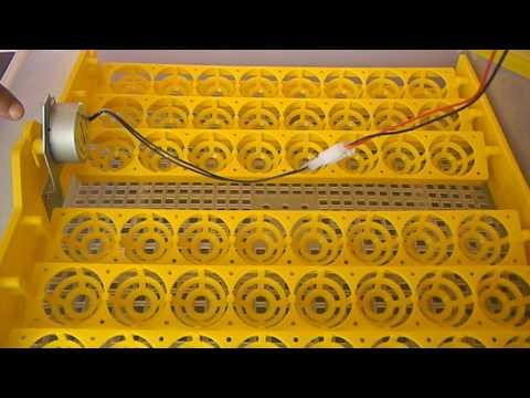 video biology egg incubator 48egg digital automatic working digital humidity autotilting abron ac 35