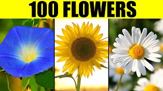 FLOWERS of the World - Names of 100 Different Types of Flowers