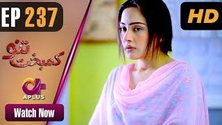 Drama | Kambakht Tanno - Episode 237 | Aplus ᴴᴰ Dramas | Tanvir Jamal, Sadaf Ashaan