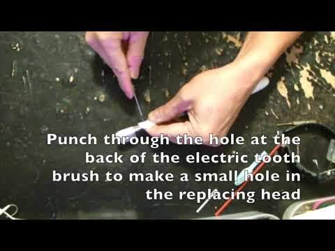 DIY a head for an electric tooth brush with a circular motion