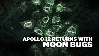 Did Astronauts Bring Moon Bugs Back To Earth? | NASA