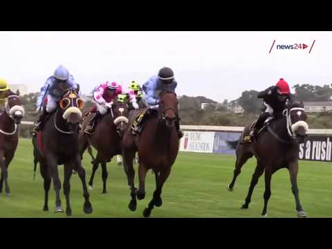 WATCH: The debate about the treatment of horses in the racing industry continues in SA