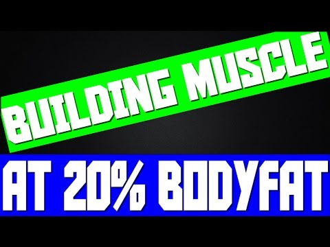 HOW TO BUILD MUSCLE AT 20% BODY FAT ● ASK MIGAN #17