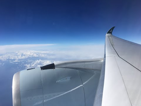 Full flight review on the Airbus A350 (New Zealand to Hong Kong) on Cathay Pacific 198