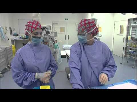 A Career in Hospital and Operating Theatre (JTJS32008)