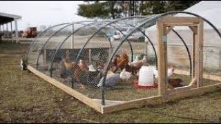 Great inventions made for chickens and poultry. Technology power.