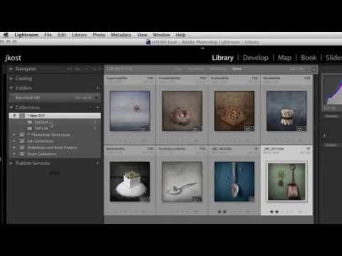 How to Remove Unwanted Collections when Exporting Catalogs in Lightroom