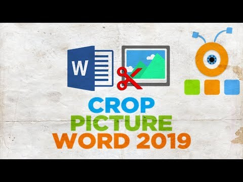 How to Crop a Picture in Word 2019