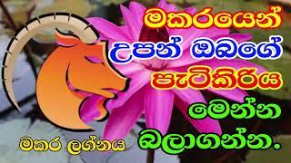 2019 Aluth Aurudu Palapala | Makara Lagnaya | මකර