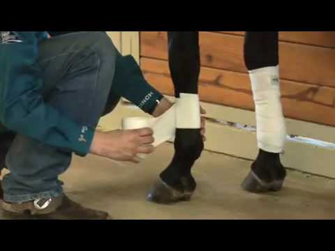 Jared Leclair - Polo Wrap How To