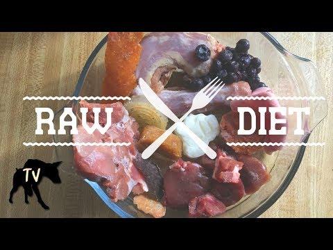Raw Feeding Doberman | Raw Feeding Vlog