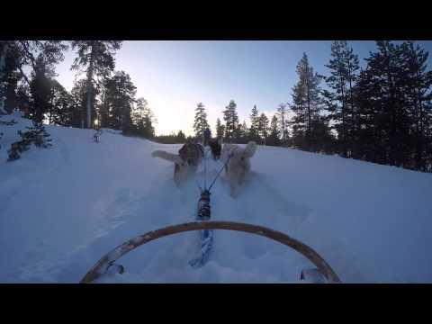 Adventures in Sunlight: Finnish Lapland