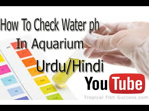 How To Check aquarium water ph With the Help of ph paper Urdu/Hindi