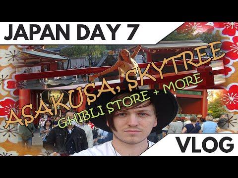 Japan Day 7 | Asakusa, Tokyo Skytree, Aquarium & More!