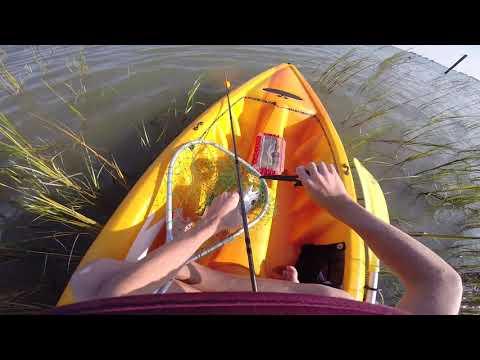Kayak Fishing Surfside Tx red fish spanish mac's & more