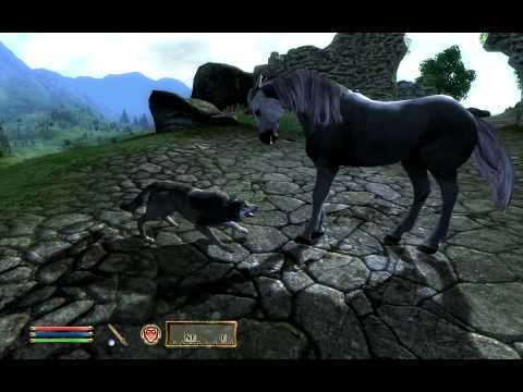 Oblivion - Unicorn vs Wolf