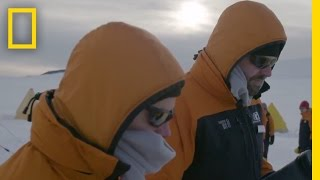 Setting Up Camp: A Day in the Life of a Scientist | Continent 7: Antarctica