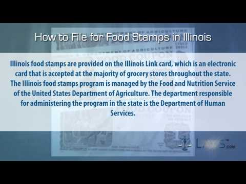 How to File for Food Stamps Illinois
