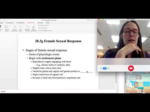 APII Reproductive system part II C