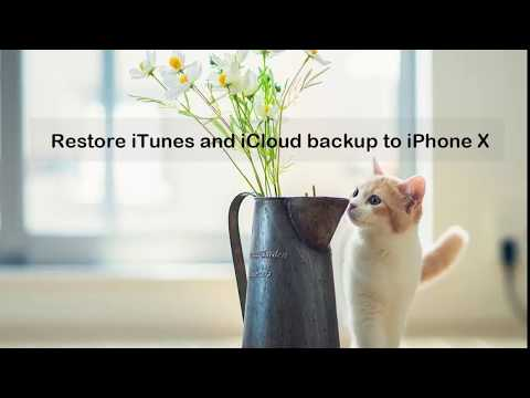 Restore iTunes and iCloud Backup to iPhone X Selectively in One Click!