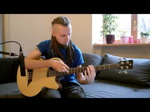 Dmitry Lisenko - Self Portrait by Steps Ahead (acoustic bass cover) percussive bass