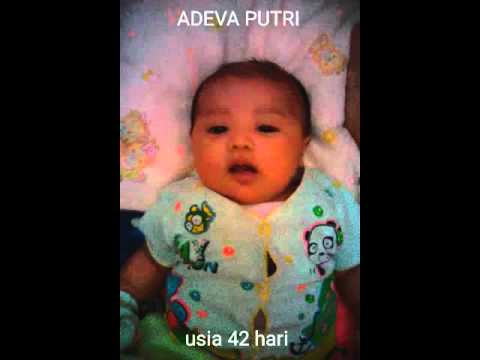 Adeva putri usia 42 hari