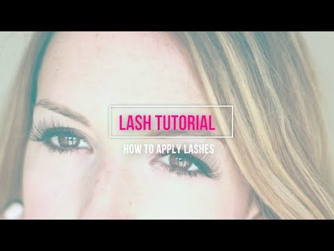 How To Apply Lashes | Eyelash Tutorial for Beginners
