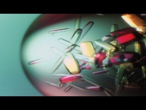 Protein Crystals - Backstage Science